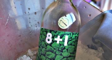 Vi blanc 8+1 (dels meus preferits!)