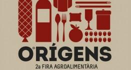 Presentació Fira Orígens 2013